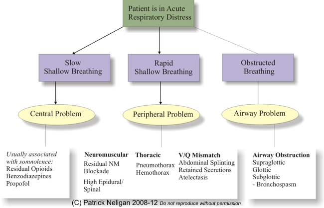 acute respiratory distress in the recovery room (tutorial, Skeleton